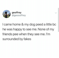 Friends, Memes, and Happy: geoffrey  @geoooffrey  I came home & my dog peed a little bc  he was happy to see me. None of my  friends pee when they see me. I'm  surrounded by fakes So many fakes nowadays