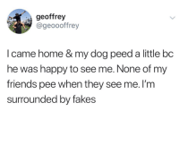 Friends, Happy, and Home: geoffrey  @geoooffrey  I came home & my dog peed a little bc  he was happy to see me. None of my  friends pee when they see me. I'm  surrounded by fakes