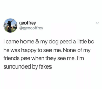 Dank, Friends, and Happy: geoffrey  @geoooffrey  I came home & my dog peed a little bc  he was happy to see me. None of my  friends pee when they see me. l'm  surrounded by fakes