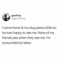 Friends, Good, and Happy: geoffrey  @geoooffrey  I came home & my dog peed a little bc  he was happy to see me. None of my  friends pee when they see me. lI'm  surrounded by fakes 1st of all I do mad kegels, 2nd of all I can only pee with the door closed while the water's running if there's anyone else in the house with me, BUT IF YOU WANT ME TO PEE ON YOUR CARPET TO PROVE THAT IM A GOOD FRIEND THEN BISH OK!!! JUST NEED A FEW TEQUILLA SHOTS FIRST. puppylove Isitlove nahitspee