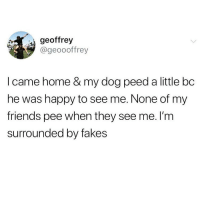 Fake, Friends, and Memes: geoffrey  @geoooffrey  I came home & my dog peed a little bc  he was happy to see me. None of my  friends pee when they see me. I'm  surrounded by fakes Tag a fake🙄 @girlsthinkimfunny for more @girlsthinkimfunny @girlsthinkimfunny