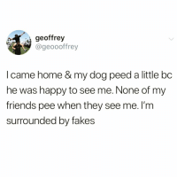Friends, Funny, and Happy: geoffrey  @geoooffrey  I came home & my dog peed a little bc  he was happy to see me. None of my  friends pee when they see me. l'm  surrounded by fakes We need new friends @_theblessedone 😭