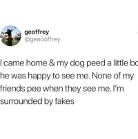 Friends, Happy, and Home: geoffrey  @geoooffrey  I came home & my dog peed a little bo  he was happy to see me. None of my  friends pee when they see me. I'm  surrounded by fakes heheheheh