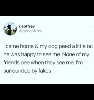 True! My Rosie is my best friend!: geoffrey  @geoooffrey  I came home & my dog peed a little bc  he was happy to see me. None of my  friends pee when they see me. l'm  surrounded by fakes True! My Rosie is my best friend!