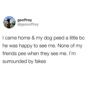 only true friends will show their excitement: geoffrey  @geoooffrey  I came home & my dog peed a little bc  he was happy to see me. None of my  friends pee when they see me. I'm  surrounded by fakes only true friends will show their excitement