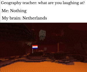 geography: Geography teacher: what are you laughing at?  Me: Nothing  My brain: Netherlands