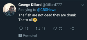 Drunk, Fish, and Irl: George Dillard @Dillard777  Replying to @CBSNews  The fish are not dead they are drunk  That's all  LI 11  15  70  Promoted Me_irl