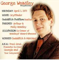 Arthur, Birthday, and Facts: George Weasley  ily  BIRTHDAY.  April 1, 1978  HOUSE  Gryffindor  Quidditch Position: Beater  PARENTS  Arthur &  Molly Weasley  OCCUPATION  Co-Owner of  Weasleys' Wizard Wheezes  HOBBIES  Quidditch & Mischief  AKA  Fred, Gred,  Prankster-In-Chief,  Georgie and  Your Holeyness Did you have a favorite between Fred and George? . . . . . . . __________________________________________________ __________________________________________________ harrypotter potterhead wizardingworld wizardingworldofharrypotter gryffindor hufflepuff slytherin ravenclaw hogwarts hogwartsismyhome bookstagram likeforlike hermione sharethemagic hermione bookworm ronweasley voldemort harrypotterfacts hpfacts snape dracomalfoy fangirl hp facts fandom emmawatson fantasticbeasts fbawtft