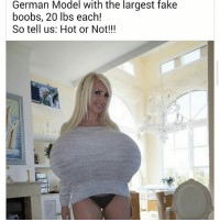25+ Best Fake Boobs Memes | Let Me Get This Straight Memes, a Real ...