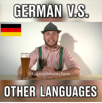 Dank, 🤖, and Language: GERMAN  VS  Ganseblumchen  OTHER LANGUAGES German words can sound pretty aggresive 😂🍻  Credit to: Felix Hummel