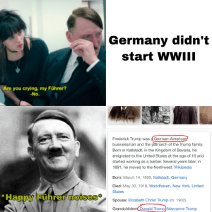Me irl: Germany didn't  start WWII  Are you crying, my Führer?  -No.  Frederick Trump was a German-American  businessman and the patriarch of the Trump family.  Born in Kallstadt, in the Kingdom of Bavaria, he  emigrated to the United States at the age of 16 and  started working as a barber. Several years later, in  1891, he moved to the Northwest. Wikipedia  Born: March 14, 1869, Kallstadt, Germany  Died: May 30, 1918, Woodhaven, New York, United  States  *Happy Führer noises  Spouse: Elizabeth Christ Trump (m. 1902)  Grandchildren Donald Trump) Maryanne Trump Me irl