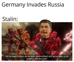 Surprise Madafaka !!!: Germany Invades Russia  Stalin:  We've been tricked, we've been backstabbed and we ve been quite  possibly, bamboozled. Surprise Madafaka !!!