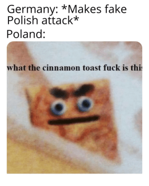 Fake, Fuck, and Germany: Germany: *Makes fake  Polish attack*  Poland:  what the cinnamon toast fuck is thi C'mon guys...