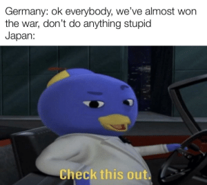 A true kamikaze by RoninXVIII MORE MEMES: Germany: ok everybody, we've almost won  the war, don't do anything stupid  Japan:  Check this out. A true kamikaze by RoninXVIII MORE MEMES