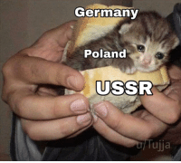 Historically accurate: Germany  Poland  USSR  Tujja Historically accurate