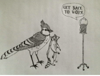 Work, Reality, and Back: GET BACK  TO WORK Reality check