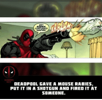 Memes, Movies, and Deadpool: GET  CORPORATE  VAMPIRE  RCT  DEAOPOOL GAVE A MOuSE RABIES,  PUT IT IN A SHOTGUN AND FIRED IT AT  SOMEONE. What's the best way Deadpool killed someone? This is my favourite. 🐭💀👉 • • • • Follow @deadpoolfacts for your daily Deadpool dose. 👇👇👇👇 @vancityreynolds 🙌 wadewilson marvelnation driveby q dc fox movies deadpool marvel deadpool2 hahaha lmfao heh