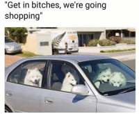 """Funny, Lol, and Shopping: """"Get in bitches, we're going  shopping"""" Lol"""