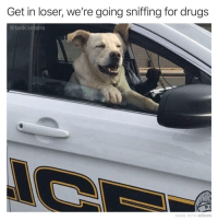 Drugs, Funny, and Tank: Get in loser, we're going sniffing for drugs  @tank.sinatra  P C  MADE WITH MOMUS He kinda looks like he already sniffed the drugs