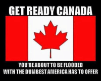Memes, Braces, and Canada: GET READY CANADA  YOU'RE ABOUT TO BE FLOODED  WITH THE DUMBESTAMERICA HAS TO OFFER Brace yourselves, northern neighbors.  Hollywood democrats are coming.