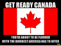 Memes, Canada, and 🤖: GET READY CANADA  YOUREABOUT TO BE FLOODED  WITH THE DUMBESTAMERICAHAS TO OFFER ~ Ginger