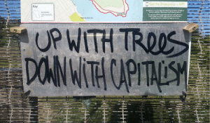 "radicalgraff:  ""Up with Trees, Down with Capitalism"" Solidarity with all the young people who took to the streets for the today's Climate Strike protests : Get the Emergency+APP  Key  Emergency is a free app developed by Australia's emergency  services and their Gevernment and indutry portners  esied Area  d  Boora Point  The opp uses GPS functionality built into smart phones to  help a riple Zero (000) eller provide ricel location  details required to mobile energmy services  Randwick Goll Club  UPWITH TROOS  DONWITH CAPITAESH  Forade radicalgraff:  ""Up with Trees, Down with Capitalism"" Solidarity with all the young people who took to the streets for the today's Climate Strike protests"