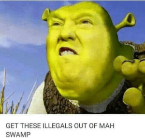 Theyll be a big, bootiful door in muh swamp bogs, for all the donkeys to come in leeegaly ????????????????????????????????????????: GET THESE ILLEGALS OUT OF MAH  SWAMP Theyll be a big, bootiful door in muh swamp bogs, for all the donkeys to come in leeegaly ????????????????????????????????????????