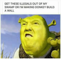 Guise STAHHHP!!! These are killing me lol.: GET THESE ILLEGALS OUT OF MY  SWAMP OR I'M MAKING DONKEY BUILD  A WALL Guise STAHHHP!!! These are killing me lol.