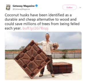 "Savage, Tumblr, and White People: Getaway  Getaway Magazine  Follow  @GetawayMagazine  Coconut husks have been identified as a  durable and cheap alternative to wood and  could save millions of trees from being felled  each year. buff.ly/2G7Kopj bennonobueno:  uncommonbish: Congratulations to white people for discovering the things they labelled  as savage and uncivilised when they found our ancestors doing them  Stop judging the article by this poorly frased tweet. Please just read the actual article. This guy obviously doesn't claim to have discovered the coconut or it's many different uses. He simply found a cheap way to mass produce pallets out of coconut husks. Of course making new things out of coconuts is an age old practice but it has never been done at this scale. This actually is a pretty cool thing because it makes use of millions of coconut husks that would have gone to waste and therefore saves more valuable resources like trees from being cut.  Article: ""Hey look at this cool new way to conserve Materials and be better to the environment!""Tumblr: ""Blah blah something, white people!"""