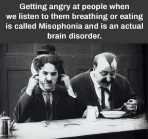 I am the only one?: Getting angry at people when  we listen to them breathing or eating  is called Misophonia and is an actual  brain disorder. I am the only one?