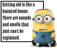 Getting Old: Getting old like a  haunted house.  There are sounds  and smells that  just eant be  explained.