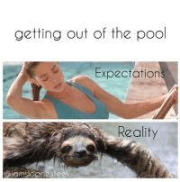 "getting out of the pool  Expectation  Reality  Ciamsoane Steel Inspired by the sexy @leishberg. Tag a friend that looks like Denise Richards in ""Wild Things"" or a friend that looks like a wet sloth after they swim!"