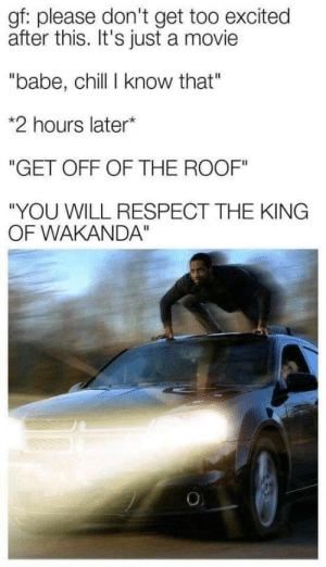 "daily-meme:  He simply don't care: gf: please don't get too excited  after this. It's just a movie  ""babe, chill I know that""  *2 hours later*  ""GET OFF OF THE ROOF""  ""YOU WILL RESPECT THE KING  OF WAKANDA""  O daily-meme:  He simply don't care"
