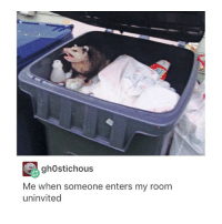 gh0stichous  Me when someone enters my room  uninvited