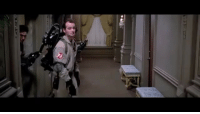 Luke Skywalker, Memes, and Ghost: Ghost busters meet Luke Skywalker. starwars ghostbusters