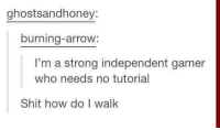 Pretty much how it goes every time! -Maegantron: ghostsandhoney:  burning-arrow  I'm a strong independent gamer  who needs no tutorial  Shit how do I walk Pretty much how it goes every time! -Maegantron