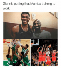 They paying off 😂 (Via djan_paolo-Twitter): Giannis putting that Mamba training to  work They paying off 😂 (Via djan_paolo-Twitter)
