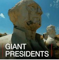 America, Donald Trump, and Future: GIANT  PRESIDENTS 4 JULY: The effigies of 43 US presidents have been left to crumble in a Virginia field, after a history theme park went bust. Now local farm owner Howard Hankins is rescuing them and hopes to get heads of presidents Barack Obama and Donald Trump made for a future park. More: bbc.in-us history presidents us america virginia farmer farming themepark fun heads statues art bbcshorts bbc news bbcnews @bbcnews