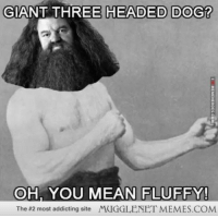 "<p>Overly Manly Hagrid <a href=""http://ift.tt/16BCcJb"">http://ift.tt/16BCcJb</a></p>: GIANT THREE HEADED DOG?  OH, YOU MEAN FLUFFY!  The #2 most addicting site /YCIGGLENET MEMES.COM <p>Overly Manly Hagrid <a href=""http://ift.tt/16BCcJb"">http://ift.tt/16BCcJb</a></p>"