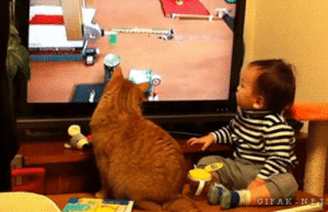 Tumblr, Blog, and Baby: GIFAK-NET lolzandtrollz:  Cat And A Baby Watching TV