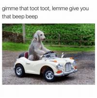 Girl Memes, Gem, and You: gimme that toot toot, lemme give you  that beep beep Blessing ur timeline w this gem