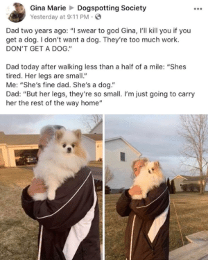 "9/11, Dad, and God: Gina MarieDogspotting Society  Yesterday at 9:11 PM  Dad two years ago: ""I swear to god Gina, 'll kill you if you  get a dog. I don't want a dog. They're too much work.  DON'T GET A DOG.""  Dad today after walking less than a half of a mile: ""Shes  tired. Her legs are small  Me: ""She's fine dad. She's a dog.""  Dad: ""But her legs, they're so small. I'm just going to carry  her the rest of the way home"" You're never getting a dog! Hear me!"