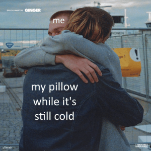 meirl: GINGER  BROCKHAMPTON  me  ONEN  ge 1  my pillow  while it's  still cold  u/ilayabr  PARENTAL ADV8O meirl