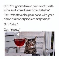 "Funny, Wine, and Alcohol: Girl: ""I'm gonna take a picture of u with  wine so it looks like u drink hahaha""  Cat: ""Whatever helps u cope with your  chronic alcohol problem Stephanie""  Girl: ""what""  Cat: ""meow""  ㄩㄧ  MasiPopal Stephanie has some stuff going on 😂 (rp: @masipopal) tag a cat lady or someone who drinks a lot 😂"