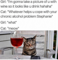 "What Cat: Girl: ""I'm gonna take a picture of u with  wine so it looks like u drink hahaha""  Cat: ""Whatever helps u cope with your  chronic alcohol problem Stephanie""  Girl: ""what""  Cat: ""meow"""