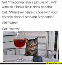 "Anaconda, Funny, and Lol: Girl: ""I'm gonna take a picture of u with  wine so it looks like u drink hahaha""  Cat: ""Whatever helps u cope with your  chronic alcohol problem Stephanie""  Girl: ""what""  Cat: ""meow""  I1  I1  @MasiPopal  timestofun.comm funny memes 100 pictures - #funnymemes #funnypictures #humor #funnytexts #funnyquotes #funnyanimals #funny #lol #haha #memes #entertainment #timestofun.com"