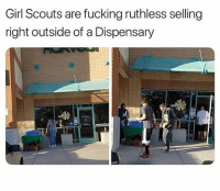 Follow @bigmike if you smoke weed: Girl Scouts are fucking ruthless selling  right outside of a Dispensary Follow @bigmike if you smoke weed