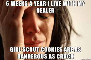Girl Scouts are killing me…..: Girl Scouts are killing me…..
