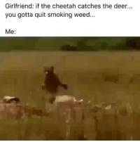 Deer, Memes, and Smoking: Girlfriend: if the cheetah catches the deer...  you gotta quit smoking weed...  Me: @stonerjoke Posts The Best Stoner Content On IG!