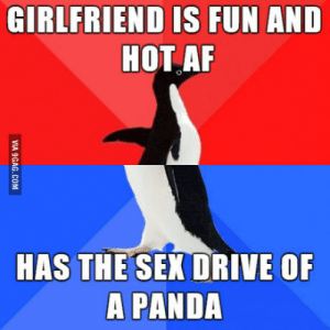 9gag, Af, and Sex: GIRLFRIEND IS FUN AND  HOT AF  HAS THE SEX DRIVE OF  A PANDA  VIA 9GAG.COM Sad but true…
